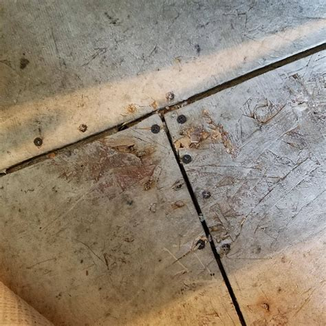 Underlayment for vinyl plank flooring   Home Improvement