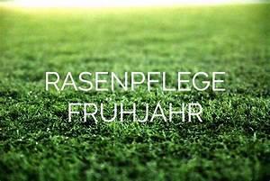 Rasenpflege Im Sommer : fr hjahrskur f r ihren rasen unsere tipps ~ Frokenaadalensverden.com Haus und Dekorationen