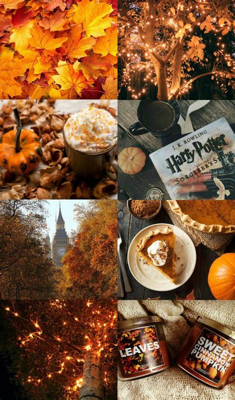 We have a massive amount of hd images that will make your computer or smartphone look absolutely fresh. Autumn - image #4816540 by Sharleen on Favim.com | Fall ...