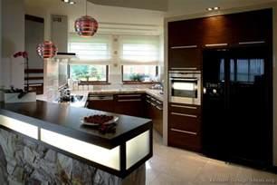 modern kitchen cabinets design ideas pictures of kitchens modern wood kitchens kitchen 3