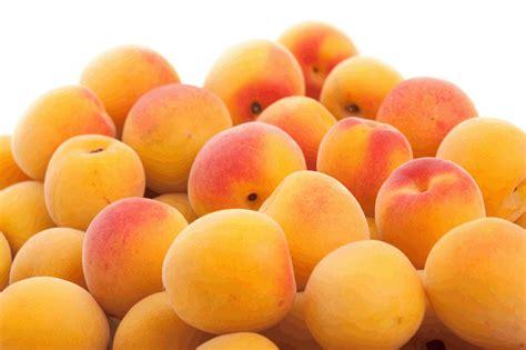 Van-Whole Produce » Blog Archive » Apricot
