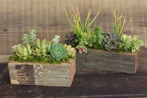 wooden succulent planter reclaimed wood succulent planters dig gardens