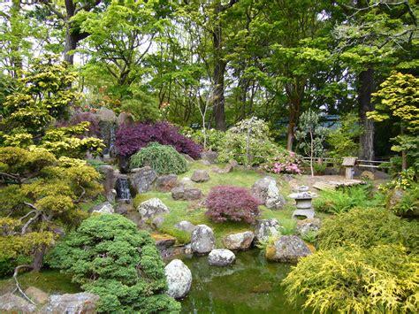 in the garden japanese garden