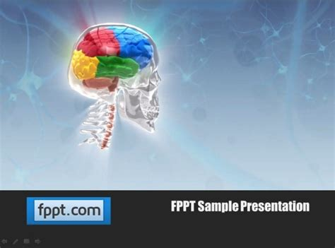 brain powerpoint templates free animated skull template for powerpoint presentations