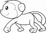 Monkey Coloring Sheets Animals sketch template