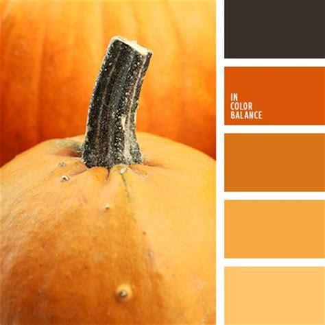 Paint Color Pumpkin by 19 Best Pumpkin Orange Paint Colors Images On