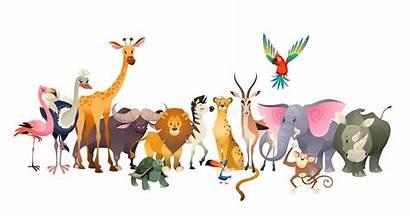 Animals Safari Animal Jungle Wildlife Africa Zoo