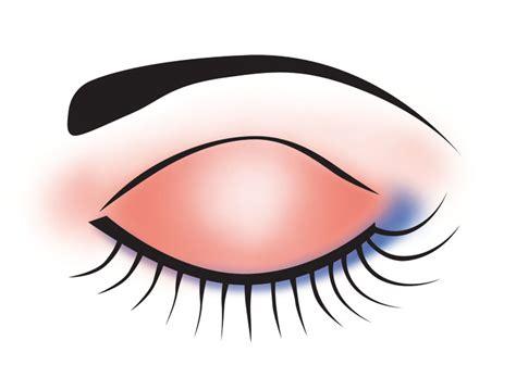 eyeshadow cliparts   clip art  clip