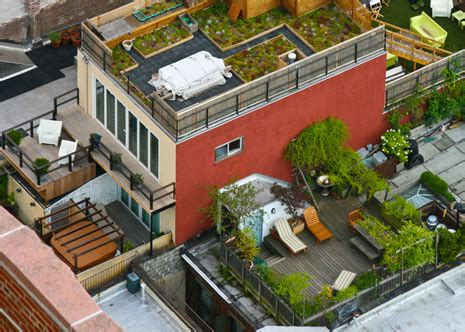 urban rooftop farming growing  popularity escali blog