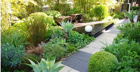 jim gardening magic tricks burke s backyard
