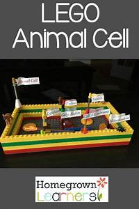 Lego Animal Cell  U2014 Homegrown Learners