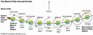 Orbit  Phases