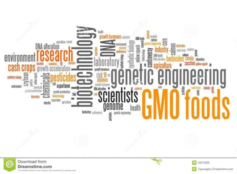 phrase cuisine gmo foods stock illustration image of dangers problem