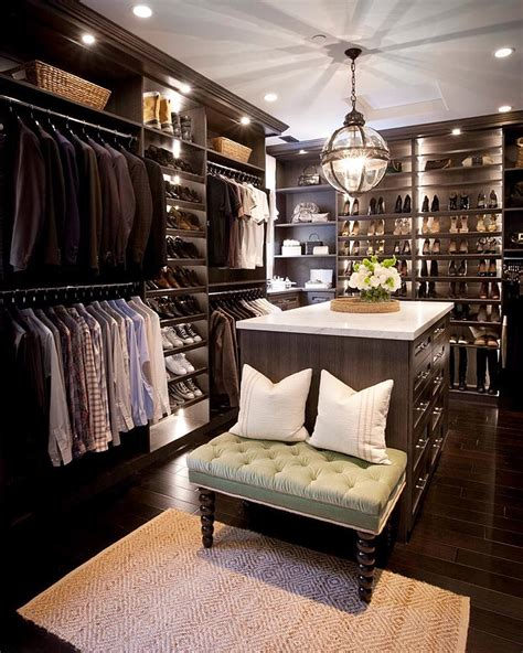 picture of closet design in moody colors
