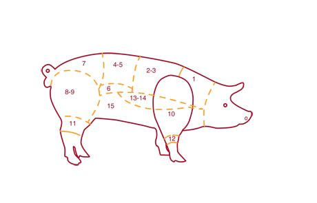 cuisiner le porc porc boucherie izard