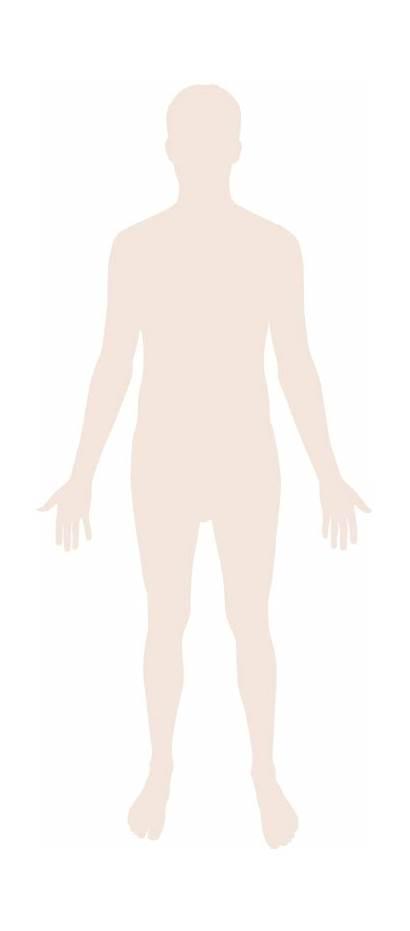 Human Silhouette Svg Wikimedia Commons Wikipedia Pixels