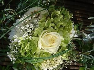 Welche Blumen Blühen Im August : tischdeko hochzeit ende august welche blumen mein sch ner garten forum ~ Orissabook.com Haus und Dekorationen