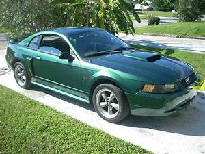 nice and shiny 2001 Mustang GT - Ford Mustang Forum