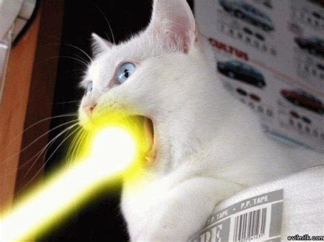 cat laser 301 moved permanently