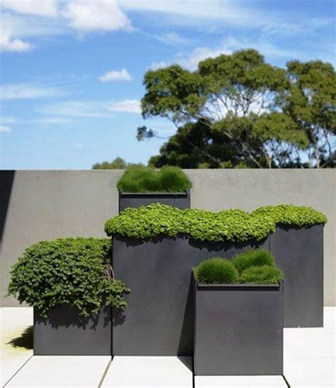 blumentöpfe und pflanzgefäße groe pflanzgefe fr drauen really encourage dekorative blumentpfe und auen ziehen die blicke an