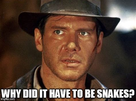 image gallery indiana jones meme
