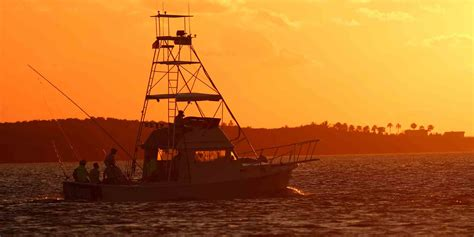 florida fishing gulf towns management anglers mexico sunshine state ecosystem fisheries strategies fintastic alamy ll head where some