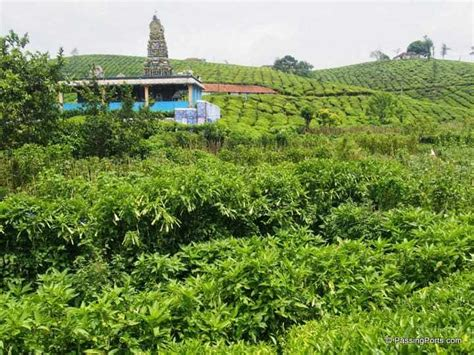 coimbatore hill station of tamil valparai a less known hill station in tamil nadu