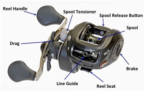 baitcasting fishing reel sharpreel