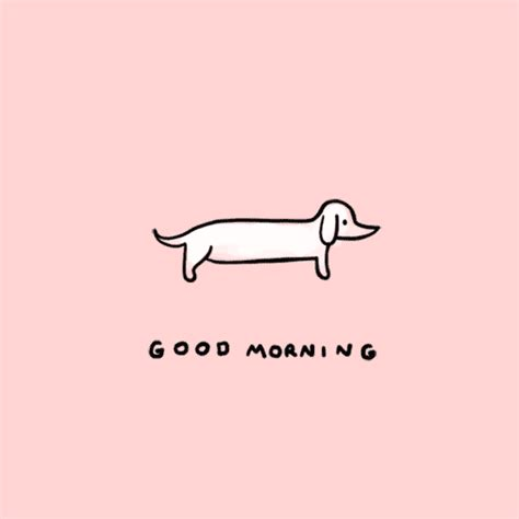 good morning gif  stefanie shank find share  giphy