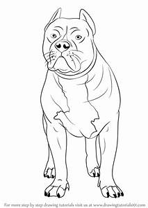 Learn How to Draw a Pitbull (Other Animals) Step by Step ...