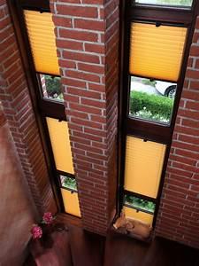 Günstig Farbe Kaufen : plissee vorhang g nstig kaufen ~ Eleganceandgraceweddings.com Haus und Dekorationen