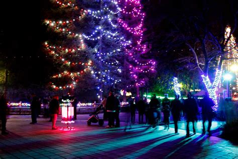 zoolights at the fresno chaffee zoo river