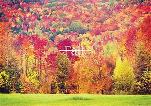 Fall Once Had A Different Name - Everything After Z by ...  Fall