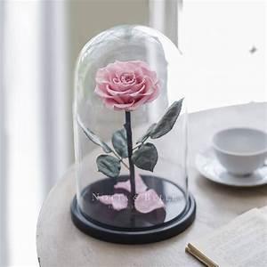 Rose Eternelle Sous Cloche : rose ternelle sous cloche king notta belle ~ Farleysfitness.com Idées de Décoration
