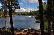 Forest Lakes Arizona