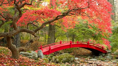 japanese garden wallpapers  images