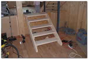 Escalier 4 Marches : petit escalier pas cher ~ Melissatoandfro.com Idées de Décoration