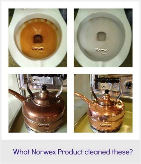 norwex cleaning biz tips wow tricks say uploaded user