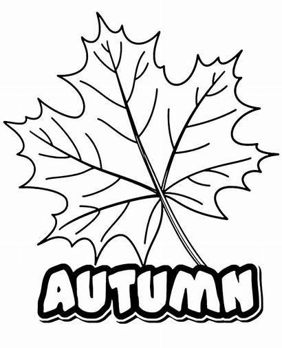 Coloring Autumn Pages Printable Leaf Fall Leaves