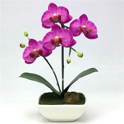 ดอกกล้วยไม้ปลอม phalaenopsis จัดในกระถางดอกไม้เซรามิค