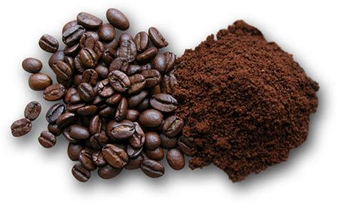 Every day we use ground coffee to make our beloved cup of java. Roasting | Conte Cafe