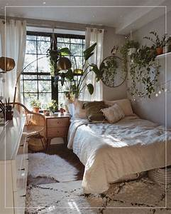 Dorm, Room, 17407, These, Are, The, Best, Indoor, Plants, For, Your