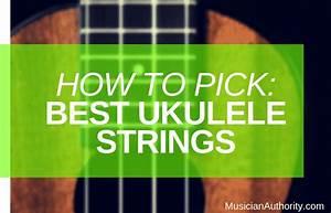 A Beginner U2019s Guide To Best Ukulele Strings  U2013 Musician