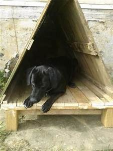15 diy dog houses made with wooden pallets pallets designs for Easy diy dog house