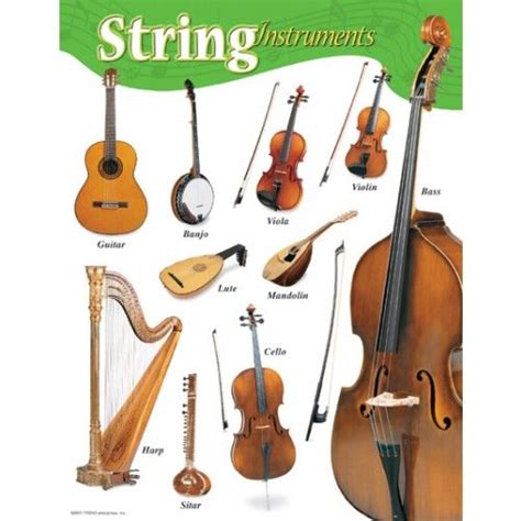 string instruments educational poster    common members   western orchestra