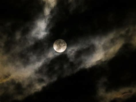 Moon Images Free Photo Moon Moon Moonlight Free Image On