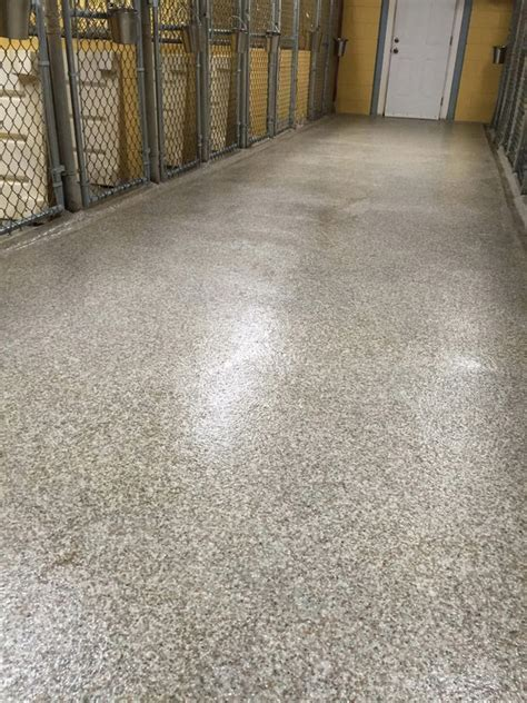 Veterinary Pet Floor Resists Odors, Stains & Germs
