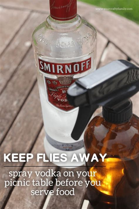 How To Keep Flies Away From Backyard by 27 Ways To Banish Bugs From Next Barbecue