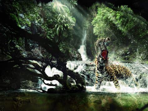 animales de la selva  fondos de pantalla