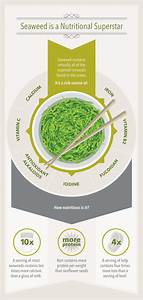 Superfood Of The Sea  A Guide To Eating Seaweed
